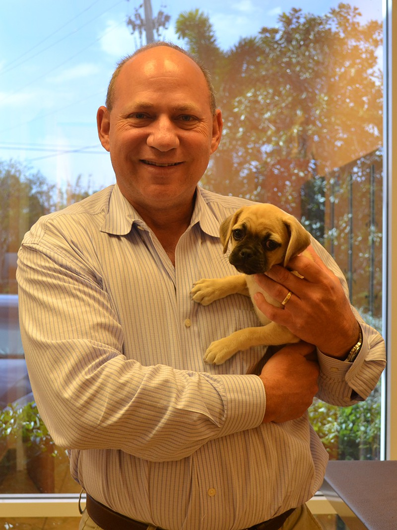 The veterinarian holding a beige and black puppy