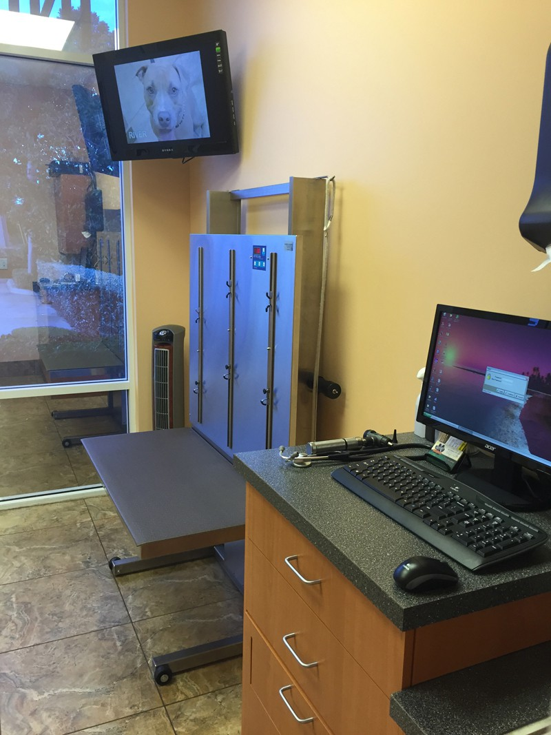One of the exam rooms for larger pets