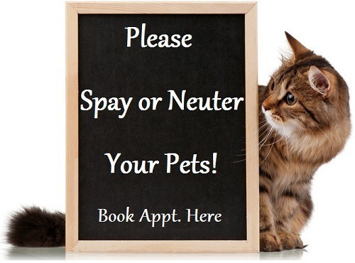 Spay neuter sign