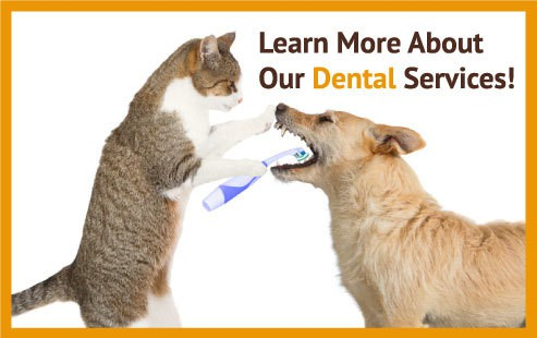 dentalservice_sign